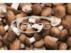 Sistema de cultivo de setas (shiitake)